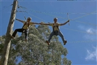 ropes course team building activities in the tree top adventures